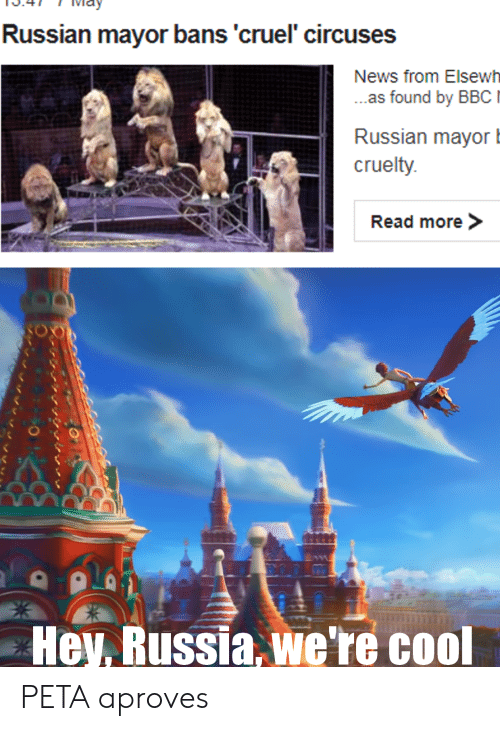 News, Peta, and Cool: Russian mavor bans'cruel circuses  News from Elsewh  as found by BBCI  Russian mayor  cruelty  Read more>  Hey. Russia we're cool PETA aproves