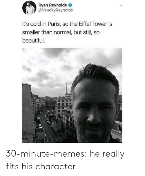 Beautiful, Memes, and Tumblr: Ryan Reynolds  @VancityReynolds  It's cold in Paris, so the Eiffel Tower is  smaller than normal, but still, so  beautiful 30-minute-memes:  he really fits his character