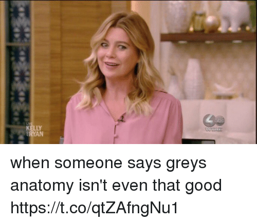 Memes, Grey's Anatomy, and Good: RYAN when someone says greys anatomy isn't even that good https://t.co/qtZAfngNu1