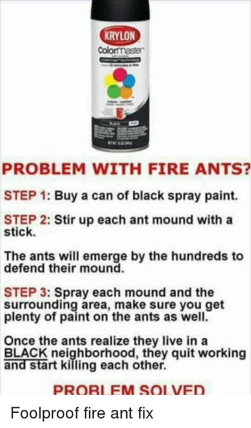 RYLON PROBLEM WITH FIRE ANTS STEP 1 Buy A Can Of Black Spray Paint