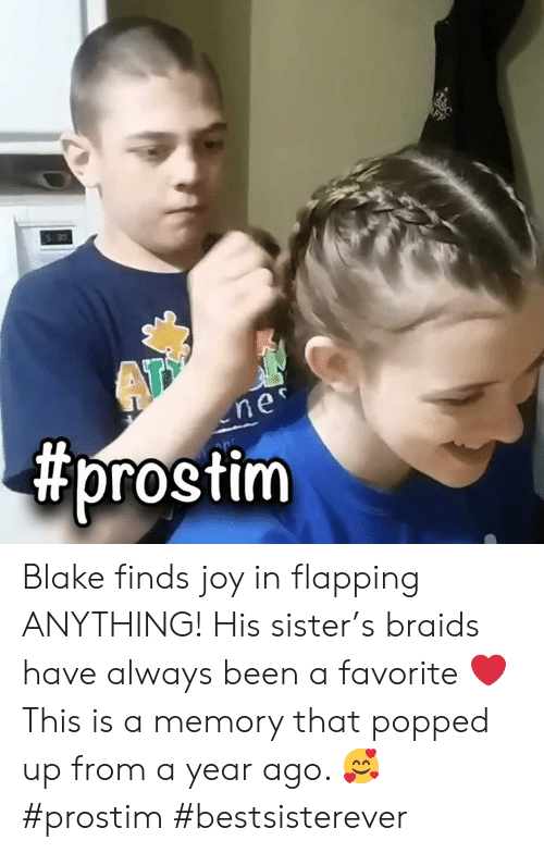 Braids, Memes, and Been: S 30  ne  Blake finds joy in flapping ANYTHING!  His sister's braids have always been a favorite ❤️  This is a memory that popped up from a year ago.  🥰  #prostim #bestsisterever