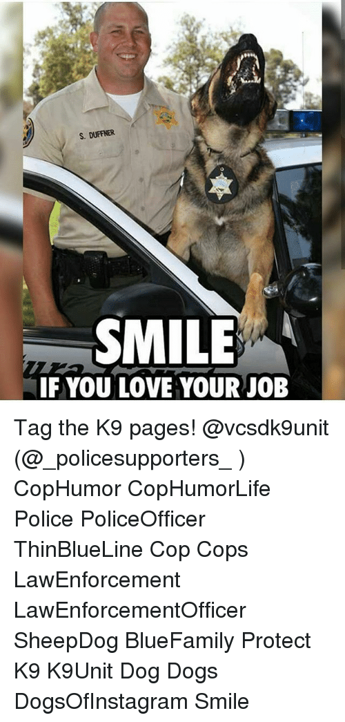 Dogs, Love, and Memes: S. DUFFNER  SMILE  IF YOU LOVE YOUR JOB Tag the K9 pages! @vcsdk9unit (@_policesupporters_ ) CopHumor CopHumorLife Police PoliceOfficer ThinBlueLine Cop Cops LawEnforcement LawEnforcementOfficer SheepDog BlueFamily Protect K9 K9Unit Dog Dogs DogsOfInstagram Smile