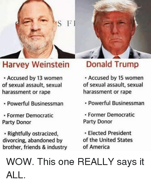 America, Friends, and Memes: S F  Harvey Weinstein Dald Trump  Accused by 13 women  of sexual assault, sexual  harassment or rape  Accused by 15 women  of sexual assault, sexual  harassment or rape  Powerful Businessman  Powerful Businessman  . Former Democratic  Party Donor  .Former Democratic  Party Donor  Rightfully ostracized,  divorcing, abandoned by  brother, friends & industry  Elected President  of the United States  of America WOW. This one REALLY says it ALL.