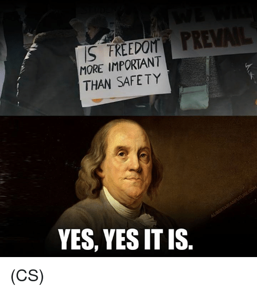 Memes, Freedom, and 🤖: S FREEDOM  MORE IMPORTANT  THAN SAFETY  YES, YES IT IS (CS)