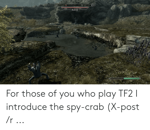 S Mudcrab for Those of You Who Play TF2 I Introduce the Spy-Crab X