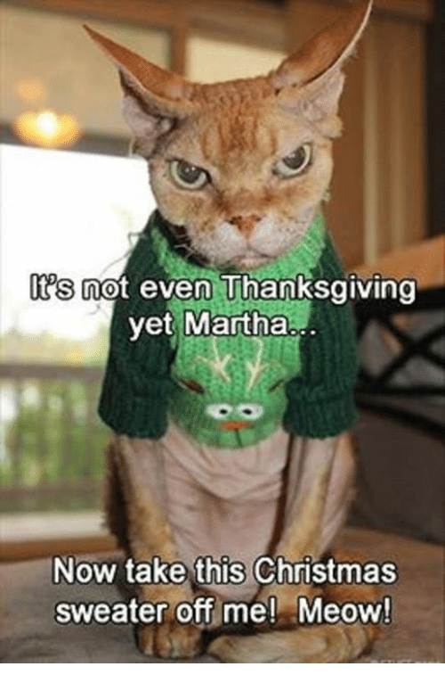 s not even thanksgiving yet martha now take this christmas 6186175 ✅ 25 best memes about martha jones martha jones memes,Memes De Thanksgiving