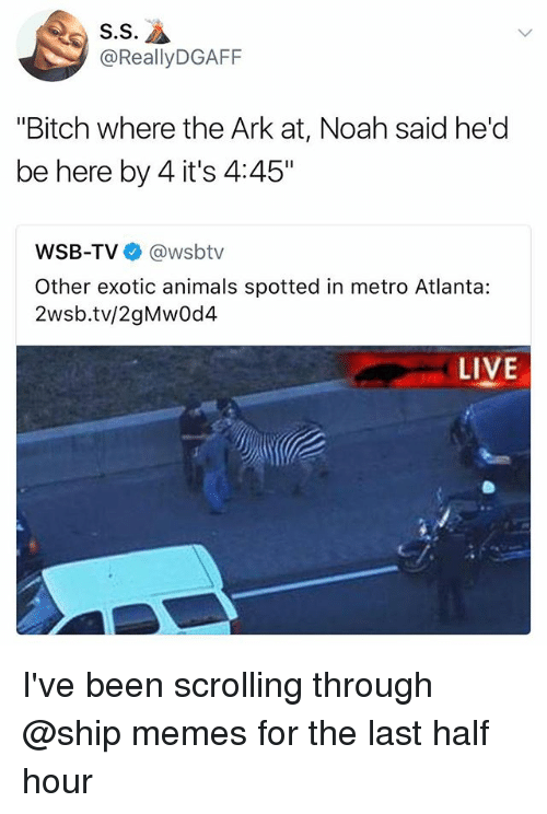 """Animals, Bitch, and Memes: S.S  @ReallyDGAFF  """"Bitch where the Ark at, Noah said he'd  be here by 4 it's 4:45""""  WSB-TV @wsbtv  Other exotic animals spotted in metro Atlanta:  2wsb.tv/2gMwOd4  LIVE I've been scrolling through @ship memes for the last half hour"""
