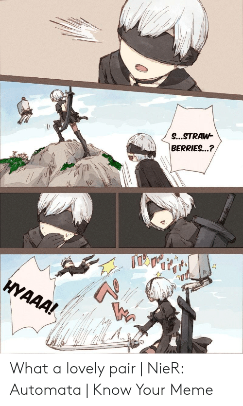 Nier Automata Memes Best Collection Of Funny Nier Automata Pictures