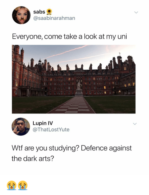 Wtf, Dank Memes, and Arts: Sabs  @saabinarahman  Everyone, come take a look at my uni  Lupin IV  @ThatLostYute  Wtf are you studying? Defence against  the dark arts? 😭😭