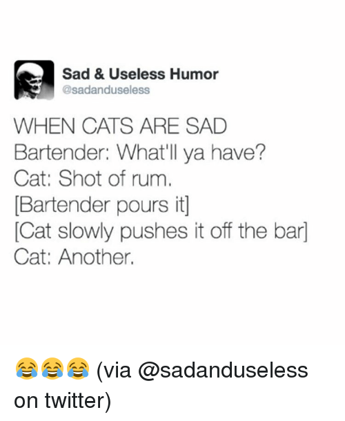 Memes, Bartending, and 🤖: Sad & Useless Humor  @sadanduseless  WHEN CATS ARE SAD  Bartender: What'll ya have?  Cat: Shot of rum  Bartender pours it  Cat slowly pushes it off the bar  Cat: Another. 😂😂😂 (via @sadanduseless on twitter)