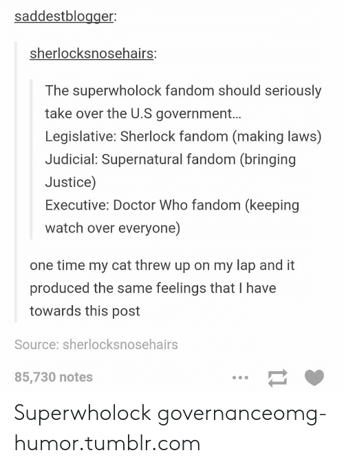 Doctor, Omg, and Tumblr: saddestblogger  sherlocksnosehai  rs:  The superwholock fandom should seriously  take over the U.S government...  Legislative: Sherlock fandom (making laws)  Judicial: Supernatural fandom (bringing  Justice)  Executive: Doctor Who fandom (keeping  watch over everyone)  one time my cat threw up on my lap and it  produced the same feelings that I have  towards this post  Source: sherlocksnosehairs  85,730 notes Superwholock governanceomg-humor.tumblr.com