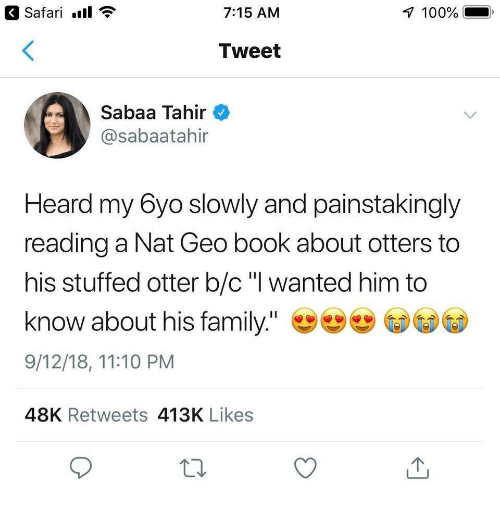 """Anaconda, Family, and Otters: Safari.  7:15 AM  100%  Tweet  Sabaa Tahir  @sabaatahir  Heard my 6yo slowly and painstakingly  reading a Nat Geo book about otters to  his stuffed otter b/c"""" wanted him to  know about his family.""""  9/12/18, 11:10 PM  48K Retweets 413K Likes"""