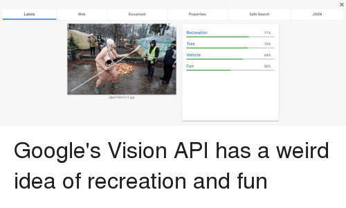 Reddit, Weird, and Vision: Safe Search  JSON  Web  Properties  Document  Labels  71%  Recreation  70%  Tree  64%  Vehicle  50%  Fun  LJ  qlpnr75lm7z11.jpg