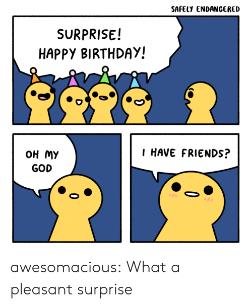 Birthday, Friends, and God: SAFELY ENDANGERED  SURPRISE!  HAPPY BIRTHDAY!  I HAVE FRIENDS?  OH MY  GOD awesomacious:  What a pleasant surprise