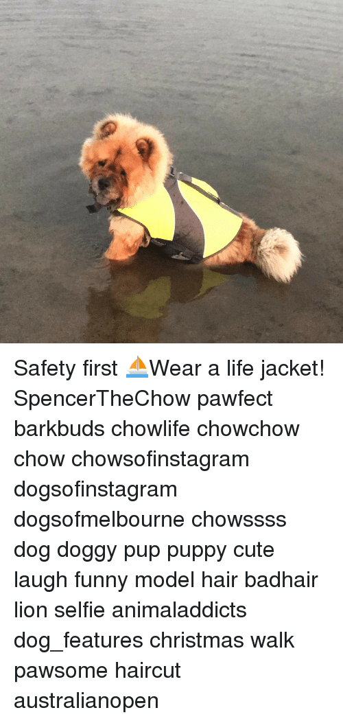 Safety First Wear A Life Jacket Spencerthechow Pawfect Barkbuds