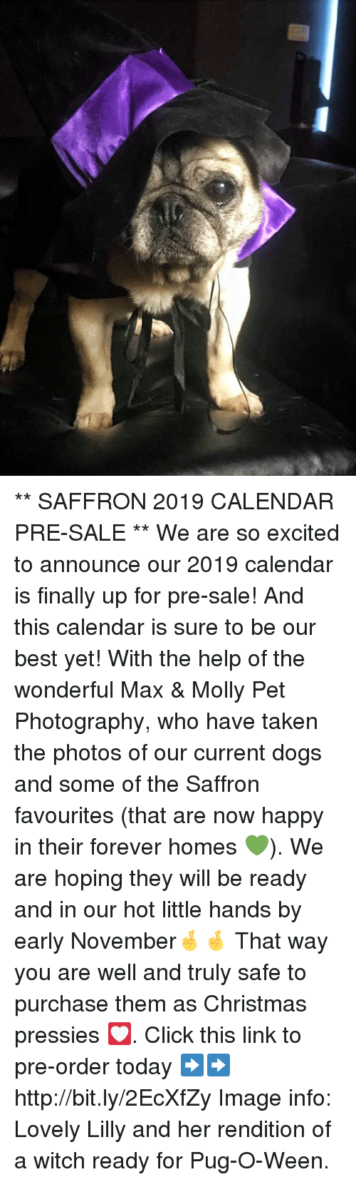 SAFFRON 2019 CALENDAR PRE-SALE ** We Are So Excited to Announce Our ...