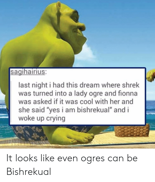 "Crying, Shrek, and Cool: sagihairius:  last night i had this dream where shrek  was turned into a lady ogre and fionna  was asked if it was cool with her and  she said ""yes i am bishrekual"" and i  woke up crying It looks like even ogres can be Bishrekual"