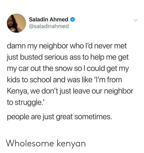 Ass, School, and Struggle: Saladin Ahmed  @saladinahmed  damn my neighbor who l'd never met  just busted serious ass to help me get  my car out the snow so l could get my  kids to school and was like 'I'm from  Kenya, we don't just leave our neighbor  to struggle.'  people are just great sometimes. Wholesome kenyan
