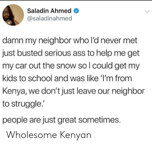 Ass, School, and Struggle: Saladin Ahmed  @saladinahmed  damn my neighbor who l'd never met  just busted serious ass to help me get  my car out the snow so l could get my  kids to school and was like 'I'm from  Kenya, we don't just leave our neighbor  to struggle.  people are just great sometimes. Wholesome Kenyan