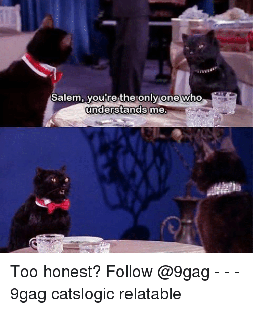 Memes, 🤖, and Salem: Salem, you're the only one who  understands  me. Too honest? Follow @9gag - - - 9gag catslogic relatable