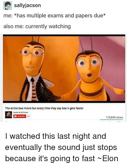 sallyjacson me has multiple exams and papers due also me 7187031 25 best the entire bee movie but everytime they say bee memes the