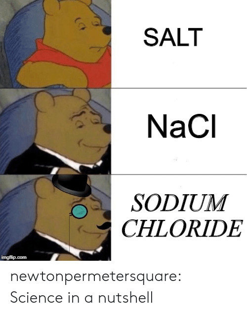 Tumblr, Blog, and Science: SALT  NaCl  SODIUM  CHLORIDE  imgflip.com newtonpermetersquare:  Science in a nutshell