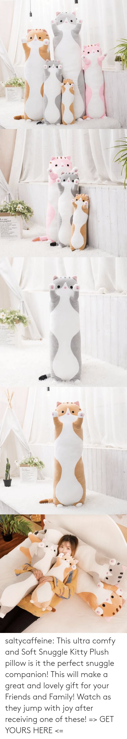 Family, Friends, and Tumblr: saltycaffeine: This ultra comfy and Soft Snuggle Kitty Plush pillow is it the perfect snuggle companion! This will make a great and lovely gift for your Friends and Family! Watch as they jump with joy after receiving one of these! => GET YOURS HERE <=