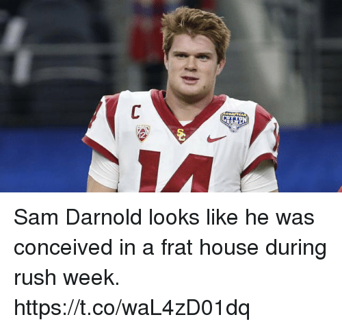 Sports, House, and Rush: Sam Darnold looks like he was conceived in a frat house during rush week. https://t.co/waL4zD01dq