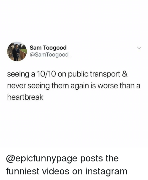 Instagram, Memes, and Videos: Sam Toogood  @SamToogood  seeing a 10/10 on public transport &  never seeing them again is worse than a  heartbreak @epicfunnypage posts the funniest videos on instagram