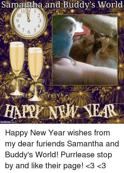 memes and samantha samantha and buddys world imikimi com happy new year