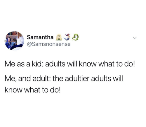 Dank, 🤖, and Samantha: Samantha D  @Samsnonsense  Me as a kid: adults will know what to do!  Me, and adult: the adultier adults will  know what to do!