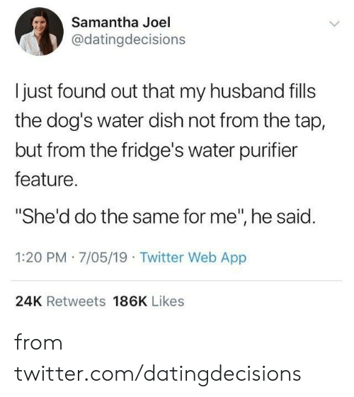 "Dank, Dogs, and Twitter: Samantha Joel  @datingdecisions  I just found out that my husband fills  the dog's water dish not from the tap,  but from the fridge's water purifier  feature.  ""She'd do the same for me"", he said.  1:20 PM 7/05/19 Twitter Web App  24K Retweets 186K Likes from twitter.com/datingdecisions"