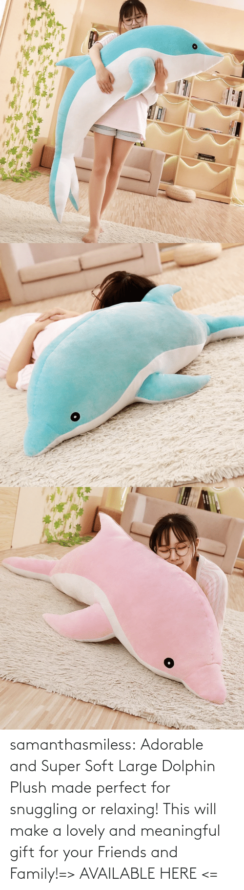 Family, Friends, and Tumblr: samanthasmiless:  Adorable and Super Soft Large Dolphin Plush made perfect for snuggling or relaxing! This will make a lovely and meaningful gift for your Friends and Family!=> AVAILABLE HERE <=