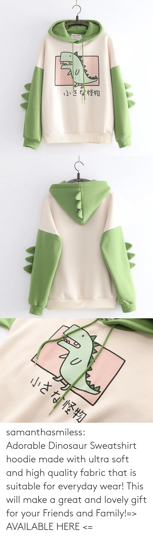 Dinosaur, Family, and Friends: samanthasmiless:  Adorable Dinosaur Sweatshirt hoodie made with ultra soft and high quality fabric that is suitable for everyday wear! This will make a great and lovely gift for your Friends and Family!=> AVAILABLE HERE <=