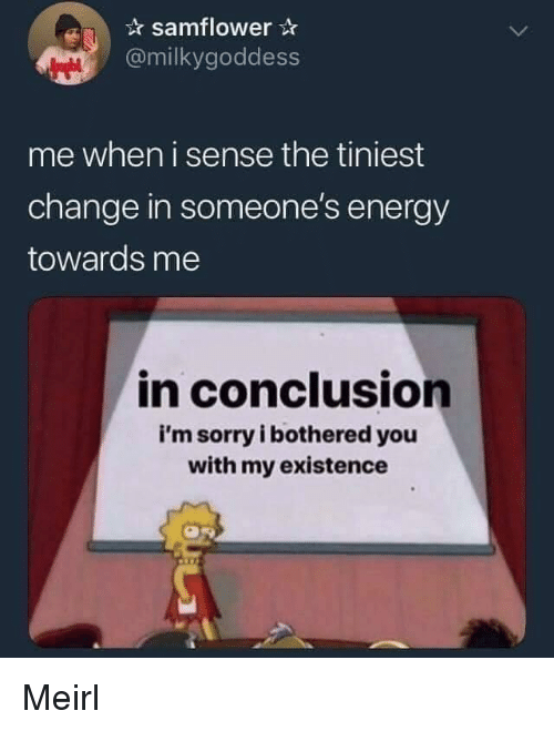Energy, Sorry, and Change: samflower  @milkygoddess  me when i sense the tiniest  change in someone's energy  towards me  in conclusion  i'm sorry i bothered you  with my existence Meirl