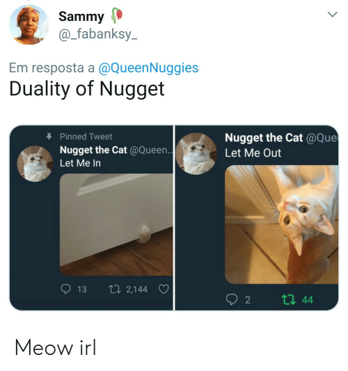 Queen, Irl, and Cat IRL: Sammy  @_fabanksy  Em resposta a @QueenNuggies  Duality of Nugget  Pinned Tweet  Nugget the Cat @Que  Let Me Out  Nugget the Cat @Queen  Let Me In  13 th 2,144 Meow irl