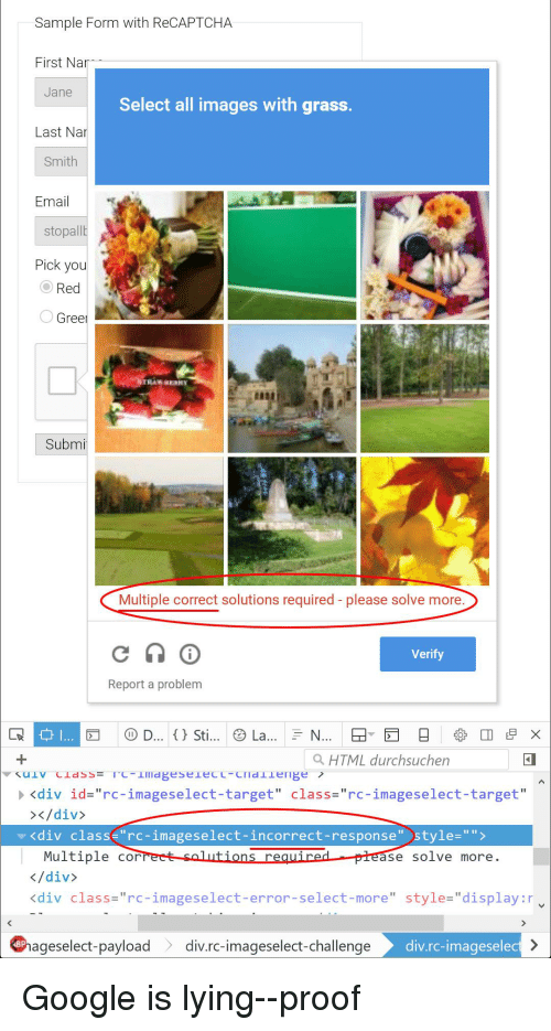 Sample Form With ReCAPTCHA First Nar Jane Select a Images With Grass