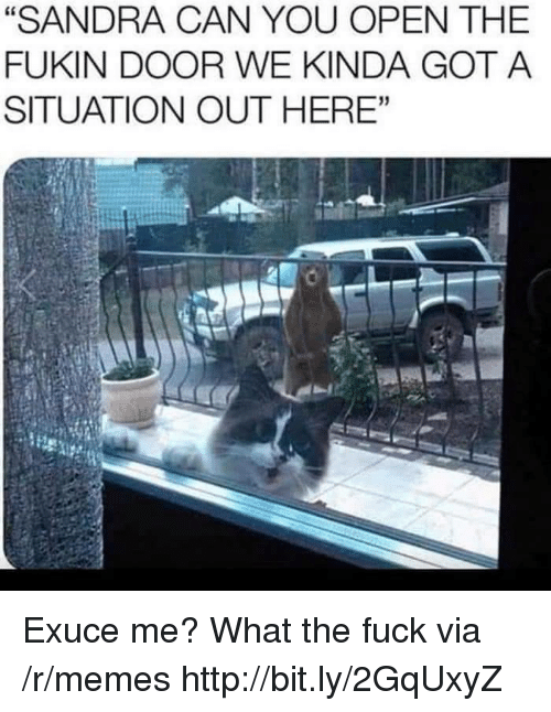 """Memes, Fuck, and Http: """"SANDRA CAN YOU OPEN THE  FUKIN DOOR WE KINDA GOT A  SITUATION OUT HERE""""  60 Exuce me? What the fuck via /r/memes http://bit.ly/2GqUxyZ"""