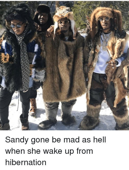 Hood, Madness, and Gone: Sandy gone be mad as hell when she wake up from hibernation