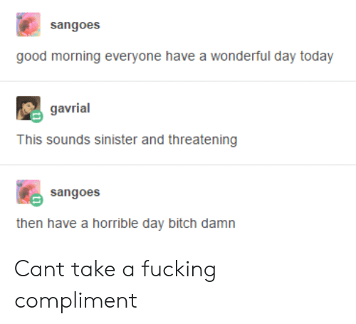Bitch, Fucking, and Good Morning: sangoes  good morning everyone have a wonderful day today  gavrial  This sounds sinister and threatening  sangoes  then have a horrible day bitch damn Cant take a fucking compliment