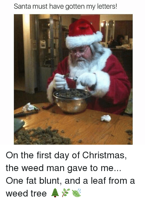 day first christmas memes and weed santa must have gotten my letters on the