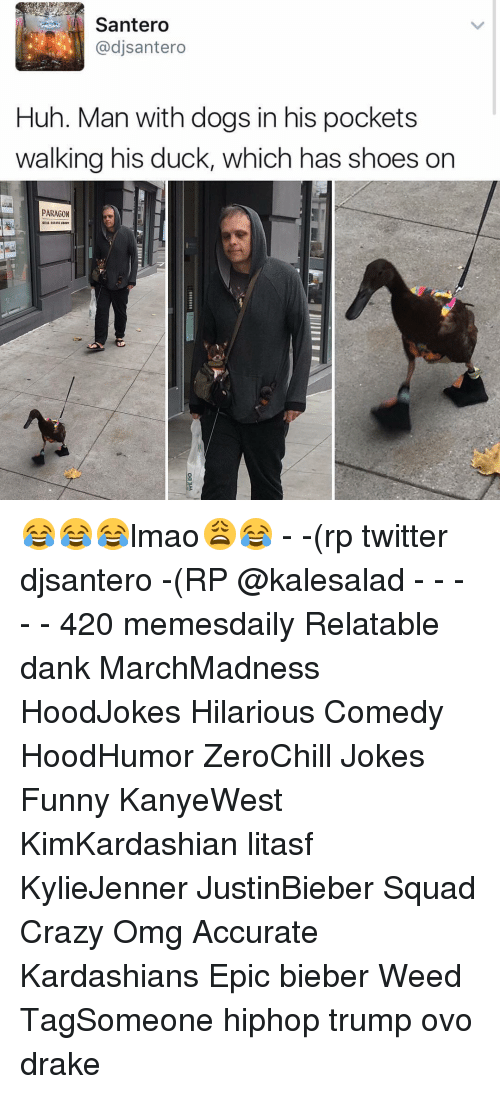 Memes, 🤖, and Paragon: Santero  dj Santero  Huh. Man with dogs in his pockets  walking his duck, which has shoes on  PARAGON 😂😂😂lmao😩😂 - -(rp twitter djsantero -(RP @kalesalad - - - - - 420 memesdaily Relatable dank MarchMadness HoodJokes Hilarious Comedy HoodHumor ZeroChill Jokes Funny KanyeWest KimKardashian litasf KylieJenner JustinBieber Squad Crazy Omg Accurate Kardashians Epic bieber Weed TagSomeone hiphop trump ovo drake