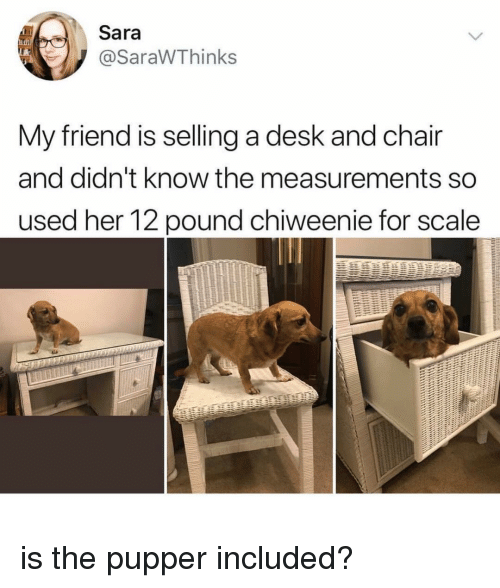 Pound me on the chair