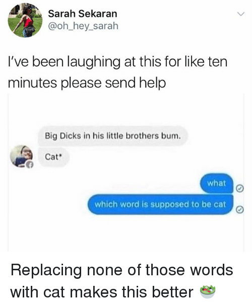 Dicks, Memes, and Help: Sarah Sekaran  @oh hey sarah  I've been laughing at this for like ten  minutes please send help  Big Dicks in his little brothers bum.  Cat  what  which word is supposed to be cat  o Replacing none of those words with cat makes this better 🥗