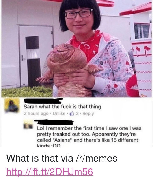 "Apparently, Lol, and Memes: Sarah what the fuck is that thing  2 hours ago Unlike 2 Reply  Lol I remember the first time I saw one I was  pretty freaked out too. Apparently they're  called ""Asians"" and there's like 15 different  kinds Q <p>What is that via /r/memes <a href=""http://ift.tt/2DHJm56"">http://ift.tt/2DHJm56</a></p>"