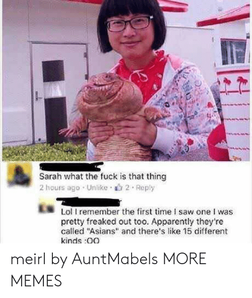 """Apparently, Dank, and Lol: Sarah what the fuck is that thing  2 hours ago . Unlike .山2 . Reply  Lol I remember the first time I saw one I was  pretty freaked out too. Apparently they're  called """"Asians"""" and there's like 15 different  kinds:0O meirl by AuntMabels MORE MEMES"""
