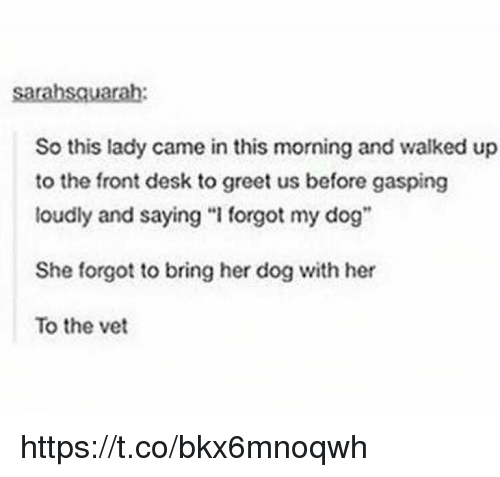 """Memes, Desk, and 🤖: sarahsauarah:  So this lady came in this morning and walked up  to the front desk to greet us before gasping  loudly and saying """"I forgot my dog""""  She forgot to bring her dog with her  To the vet https://t.co/bkx6mnoqwh"""