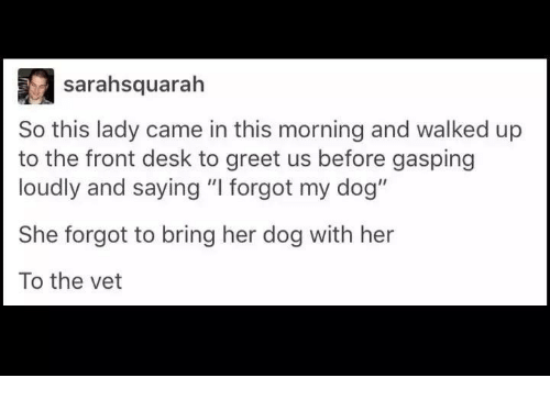 "Dank, 🤖, and Dog: sarahsquarah  So this lady came in this morning and walked up  to the front desk to greet us before gasping  loudly and saying ""I forgot my dog""  She forgot to bring her dog with her  To the vet"