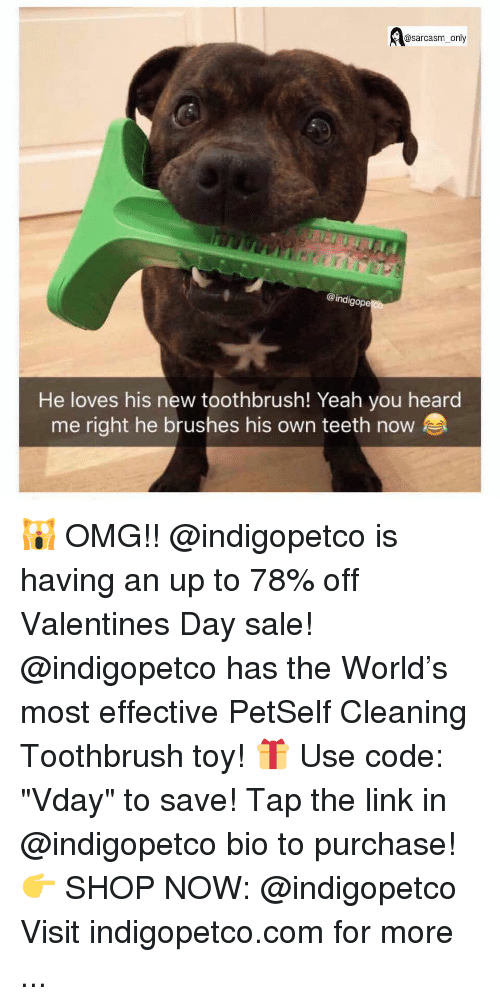 "Funny, Memes, and Omg: @sarcasm_only  @indig  ope  He loves his new toothbrush! Yeah you heard  me right he brushes his own teeth now 🙀 OMG!! @indigopetco is having an up to 78% off Valentines Day sale! @indigopetco has the World's most effective PetSelf Cleaning Toothbrush toy! 🎁 Use code: ""Vday"" to save! Tap the link in @indigopetco bio to purchase! 👉 SHOP NOW: @indigopetco Visit indigopetco.com for more ..."
