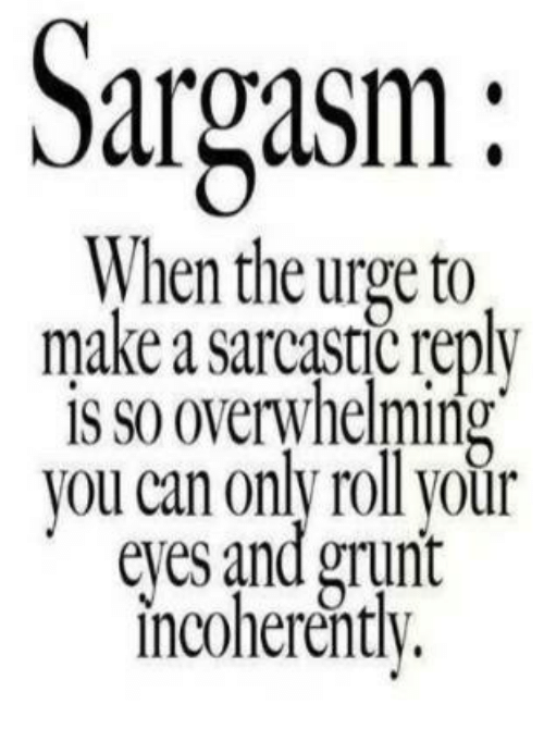 Sargasm When the Urge to Make a Sarcastic Reply IS S0